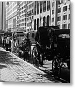 The Horse And Buggy Lineup Metal Print
