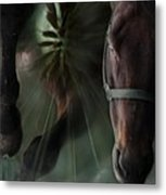 The Horse And The Dandelion Metal Print