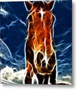 The Horse Metal Print by Paul Ward