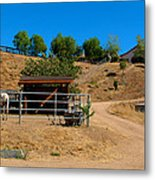 The Horse Ranch 2 Metal Print