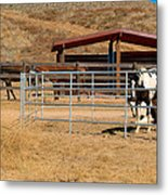 The Horse Ranch 3 Metal Print