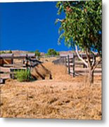 The Horse Ranch Metal Print