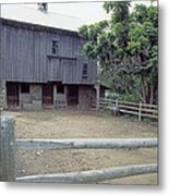 The Horses Are Out Of The Barn Metal Print