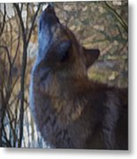 The Howl Metal Print