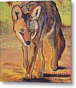 Coyote Hunting Metal Print