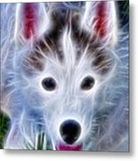 The Huskie Pup Metal Print by Bill Cannon