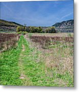 The Ice Age Trail Metal Print by Jonah  Anderson