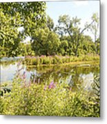 The Indiana Wetlands 2 Metal Print