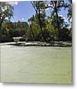 The Indiana Wetlands Metal Print