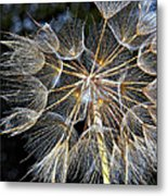 The Inner Weed Paint Metal Print