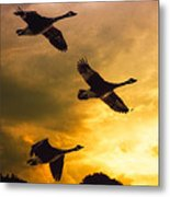 The Journey South Metal Print