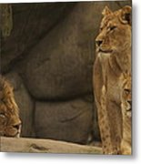 The King And His Queens Metal Print