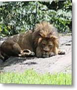 The King On His Day Off Metal Print