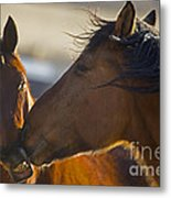 The Kiss   #3423 Metal Print