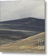 The Land Scape Metal Print