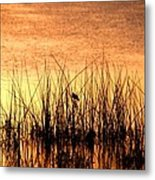 The Last Song Of The Day Metal Print