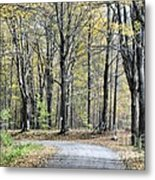 The Leaves Are Falling Metal Print