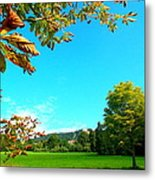 The Leaves Are Turning Golden... Metal Print