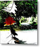 The Leaves Will Soon Start To Fall  Metal Print