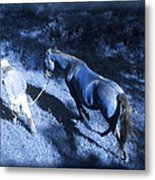 The Light And Shadows Of A Man And His Horse Metal Print