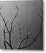 The Lightning Tree Metal Print