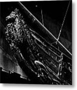 The Lion. Wasa-museum. Stockholm 2014 Metal Print