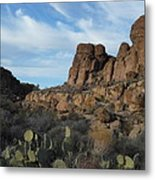 The Living Desert Of Arizona Metal Print