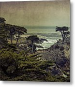 The Lone Cypress Metal Print