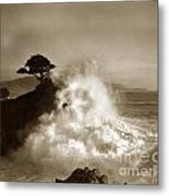 The Lone Cypress Midway Point Pebble Beach  Lewis Josselyn  Circa 1916  Metal Print