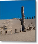 The Lonely Driftwood Metal Print