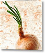The Lonely Onion Metal Print