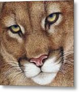 The Look Cougar Metal Print