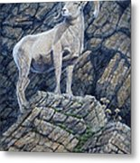 The Look Out Metal Print