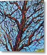 The Looking Tree Metal Print