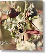 The Lord Is Good Metal Print