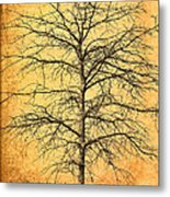 The Lord Jesus Is The Tree Of Life Metal Print