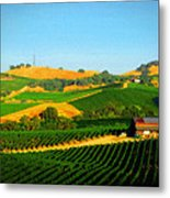 The Los Carneros District Metal Print