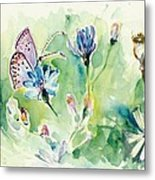 The Love Between Butterfly And Chicory Metal Print