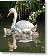 The Magic Of Spring Metal Print by Gill Billington