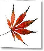 The Magical Colors Of Fall Metal Print