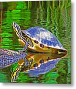 The Magnificence Of Turtle Metal Print