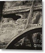 The Marks Of Age Metal Print
