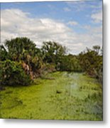 The Marsh At Cumberland Metal Print