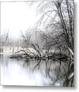 The Marsh Metal Print