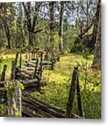 The Meadow Fence Metal Print