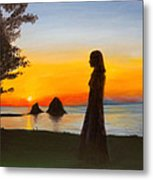 The Meditation Lake Metal Print