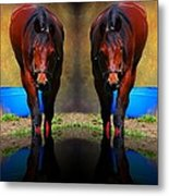 The Mirror Metal Print