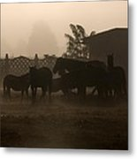 The Misty Morning Metal Print