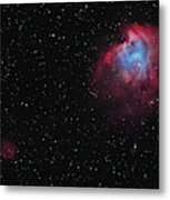 The Monkey Head Nebula And Sh2-247 Metal Print