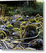 The Moss In The River Stones Metal Print